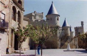 Castillo-de-Olite(00)
